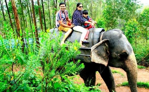 5N/6D Standard Kerala Package