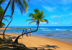 Enlivening Goa Tour Package