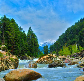 Magical kashmir Family Holiday