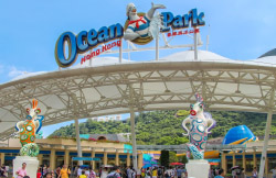 <p>Visit Ocean Park, one of the largest oceanariums in the world which features aquariums, dolphin shows and of course, the giant pandas. (Upon reservation you can choose to either to have RETURN Hotel Transfer Journey or SINGLE Hotel to Ocean Park Transfer Journey).Ocean Park is one of the largest oceanariums in the world and the largest of its kind in S.E. Asia with an area of 870,000 square meters. It features aquariums, dolphin shows, thrilling rides, Asia...Transportation by coach, entrance to Ocean Park and Middle Kingdom, tour of jewellery factory and services of a local guide.</p>